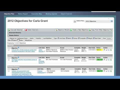 SuccessFactors - Performance & Goals Product Overview
