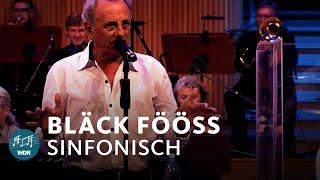 Bläck Fööss: Sinfonisch | WDR Funkhausorchester