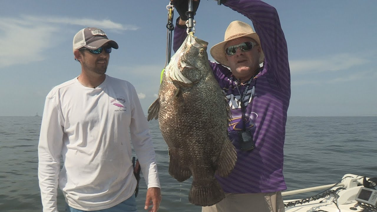 Fox sports outdoors anchor barry stokes catches giant for Dauphin island fishing report