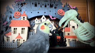 The Haunting of Honk Manor