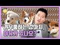 [Eng sub] 갸우뚱하는 강아지, 이유가 있나요?|강형욱의 소소한 Q&A