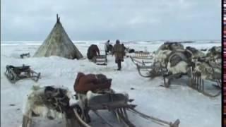 Последние кочевники Арктики 1 серия