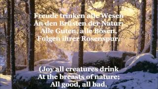 ode an die freude song of joy with german lyrics english translation