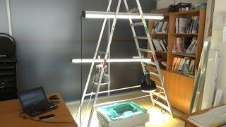 видео Система управления освещением DALI