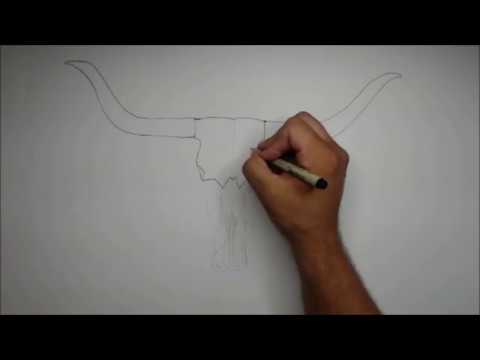 How To Draw A Simple Cow Skull With Feathers Youtube