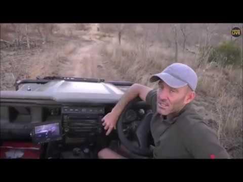 SafariLive Aug 13 - Always Fun With James Hendry!  ;)