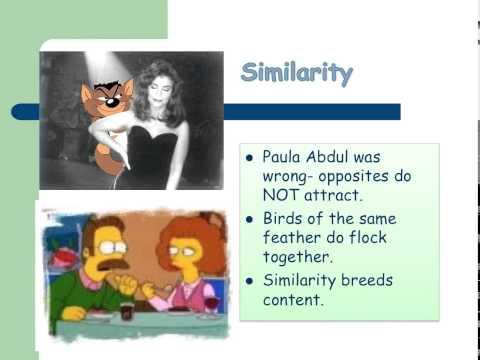 Social Psychology  Social Relations