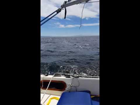 Sailing in Santa Cruz California
