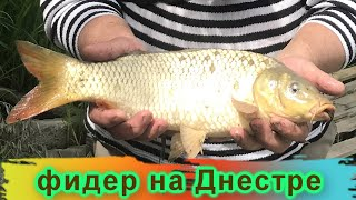 Рыбалка на фидер Днестр Маяки 5 06 2021