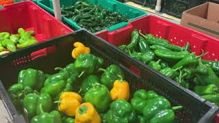 OSU-OKC farmers market to merge with Scissortail Park