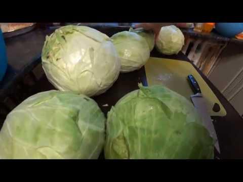 Полезные советы при засолке капусты
