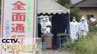 [中国财经报道] 日本猪瘟疫情扩散至9个县级行政区 引发养殖户担忧 | CCTV财经
