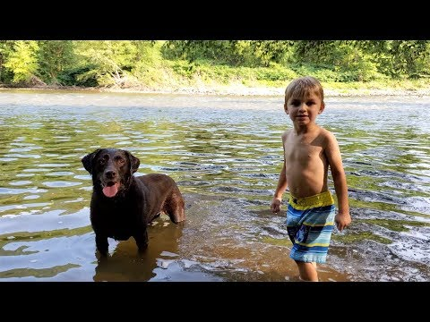 DOG VS KID: Who Likes Swimming in the Creek More?