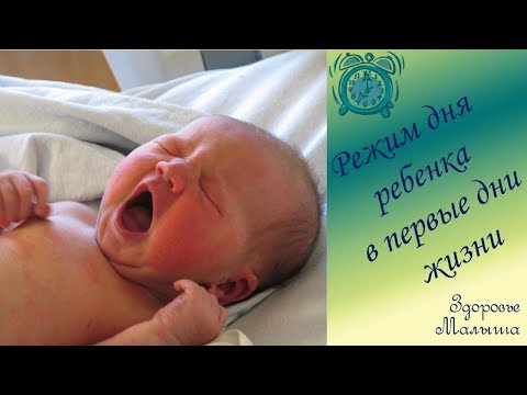 Режим дня новорожденного ребенка в первые дни жизни