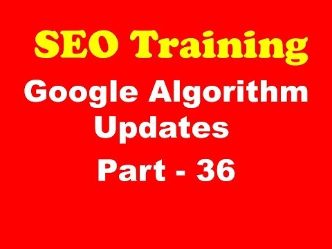 SEO Training - Google Algorithm Updates