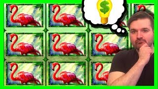 How To WIN Playing Slot Machines: Jungle Riches Slot Machine FOOL PROOF Strategy With SDGuy1234