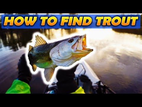Neuse River Trout Fishing (How To Find Trout)