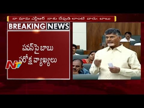CM Chandrababu Naidu Satirical Comments on Pawan Kalyan || NTV