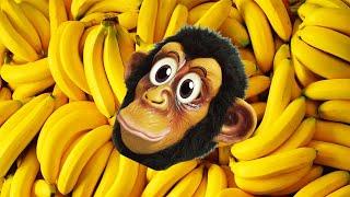 Baby Monkey Banana Canciones de animales l Canciones Infantiles con Alex y Nastya