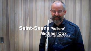 Сен-Санс, Вольер, видео урок первой флейты BBC Symphony Майкла Клкса
