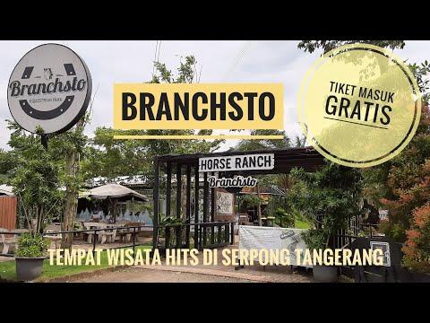 (tempat-wisata-hits)-branchsto---wisata-kuda-poni-yang-lagi-viral-di-serpong-tangerang