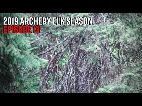 One Close Call - Idaho Opening Weekend Elk Hunt | 2019 Hunting Season EP.13