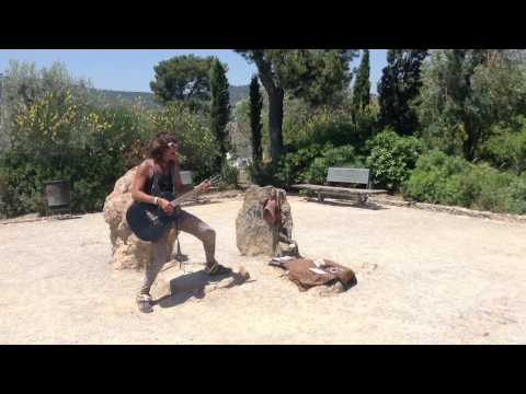 Crazy guy singing the chihuahua song - Park Guell, Barcelona