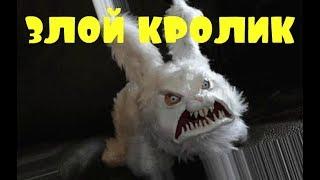 Приколы \ Неудачи \ Падения \ Идиоты \ Злой кролик \ Подборка от Best Video #19