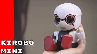 Kirobo Mini - Toyota Robot