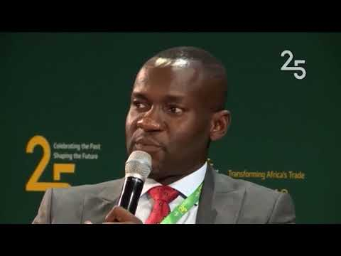 Afreximbank Debate: Businesses share their experience working with the bank