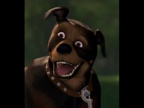Over the Hedge Dog - Play!? - YouTube