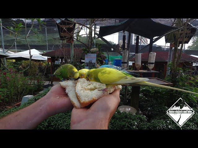 Tierfütterung der besonderen Art • Vlog #68