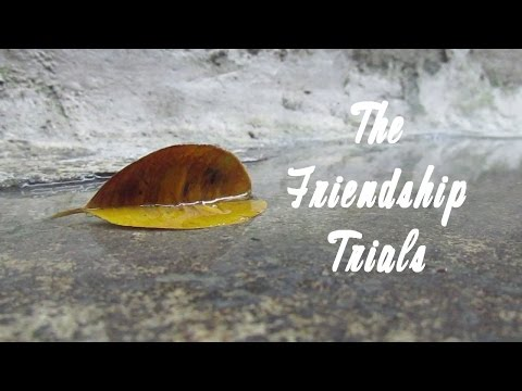 The Friendship Trials (Short Film) - Fort Bonifacio High School - IV-Burgos