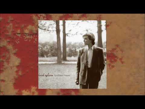 David Sylvian / Brilliant Trees (Full Album)