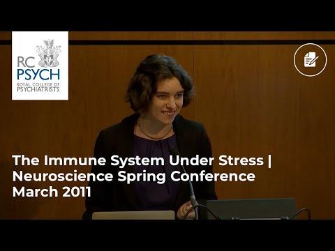 The immune system under stress