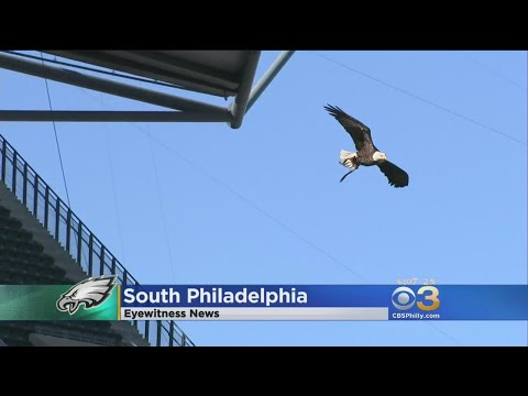 Lincoln Financial Field Receives Special Visit From Challenger