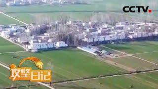 《攻坚日记》 20200410 2020年的春天 第二集 春耕与希望|CCTV农业