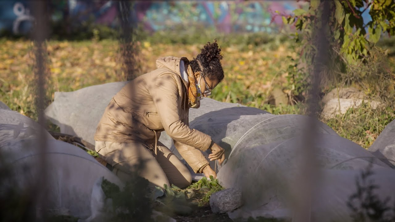 This North Philly urban farm is fighting food insecurity during COVID-19