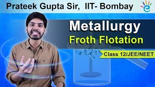 Metallurgy : Froth Flotation Class 12 | IIT JEE (Mains) | NEET