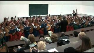 'Ой, у полі верба'. Українська народна пісня