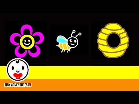 Baby Sensory | Stripe Surprise #3 - Bees and Flowers (Infant Visual Stimulation)