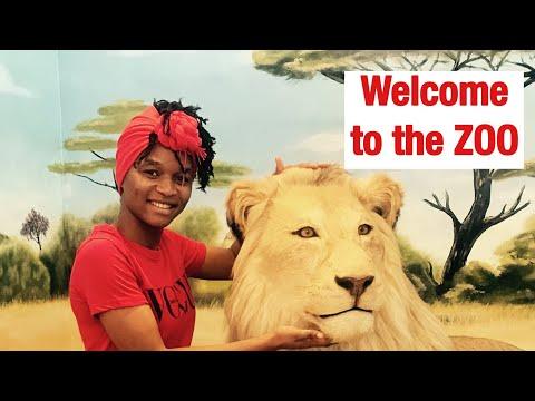 Lubumbashi/DRC/ Zoo Vlog