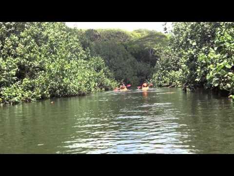 Kauai Trip (honeymoon) - vlogwithkendra