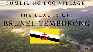 BRUNEI IN 4K | CINEMATIC | Sumbiling Eco Village.