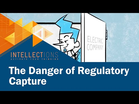 The Danger of Regulatory Capture