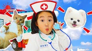 Boram play lego hôpital pour animaux jouent avec des blocs de jouets colorés