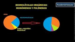 Biomoléculas Orgánicas: Monómeros y Polímeros