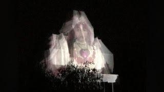 Disneyland Paris - The Phantom Wedding (Halloween 2004)