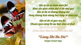 两只蝴蝶   LIANG ZHI HU DIE   LYRICS