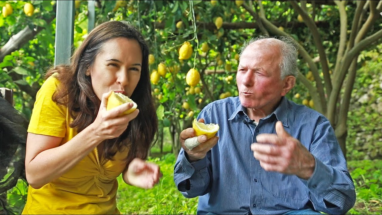The old men lemon farmers of Italy. Beautiful video